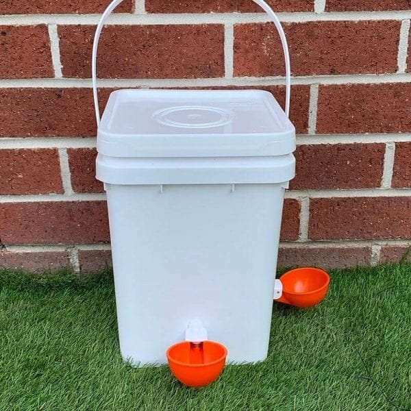 Automatic water drinker for chickens