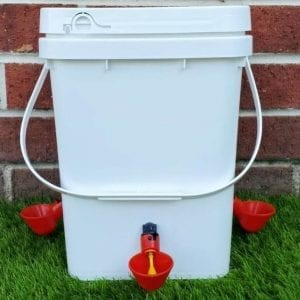 10 litre chook waterer