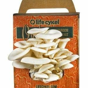 LifeCykel Mushroom Growing Kit