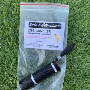 Egg Candling Torch