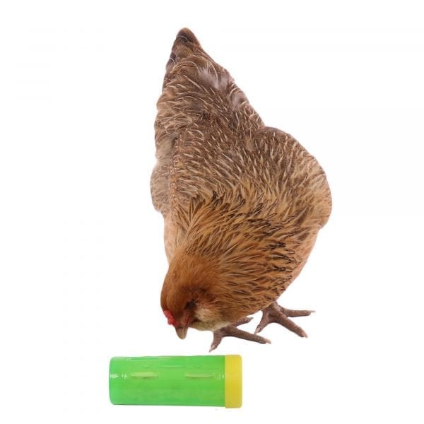 Treat Roller Toy For Chickens