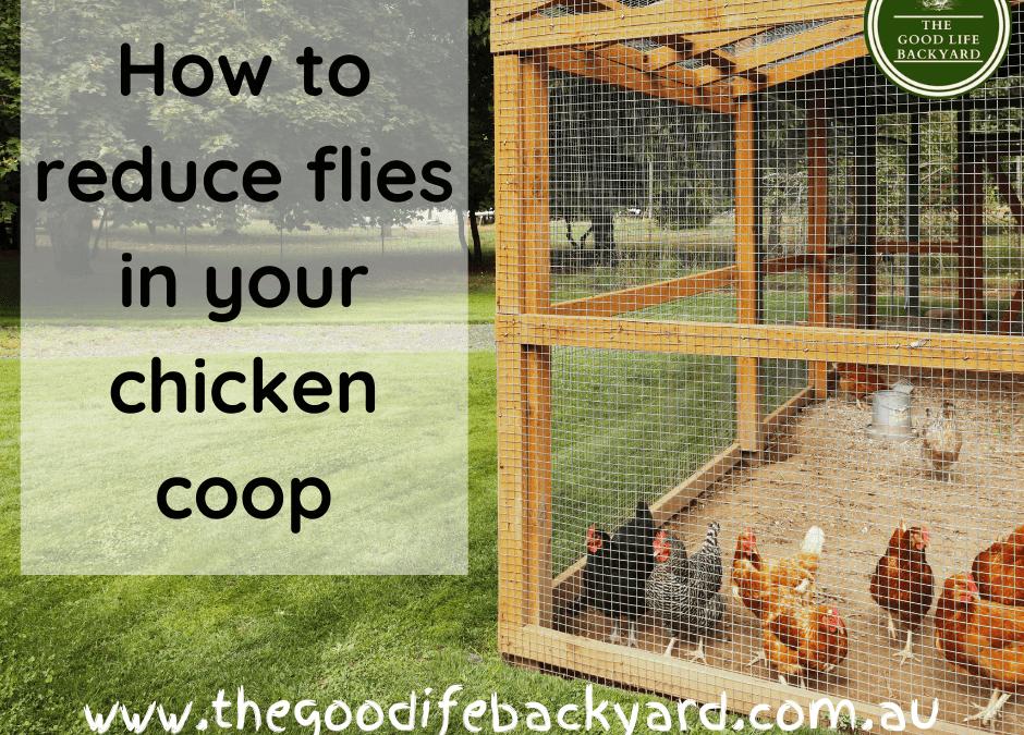 How to reduce flies in the chicken coop