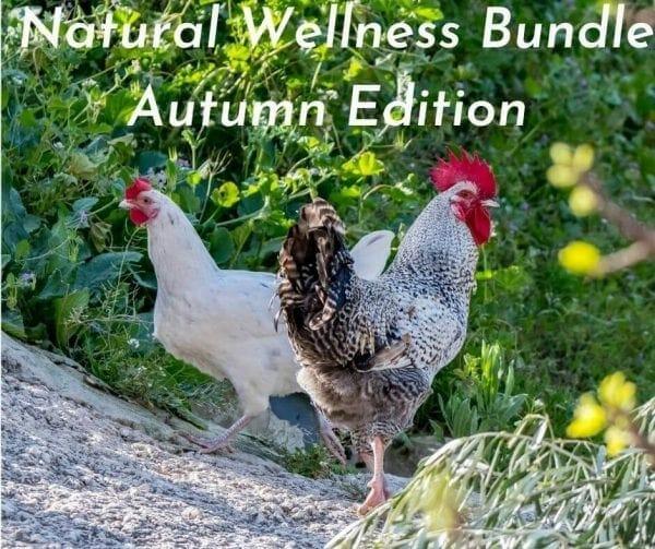 Chicken Health Bundle Autumn