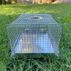Multi Mouse Trap