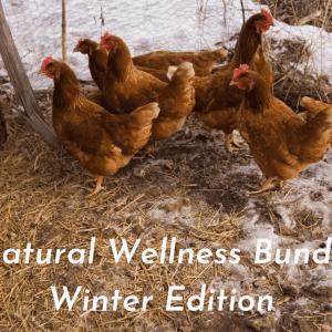 Health Bundle Winter