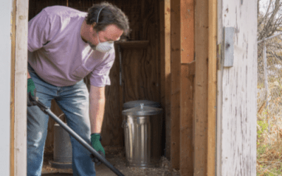 Spring cleaning the chicken coop
